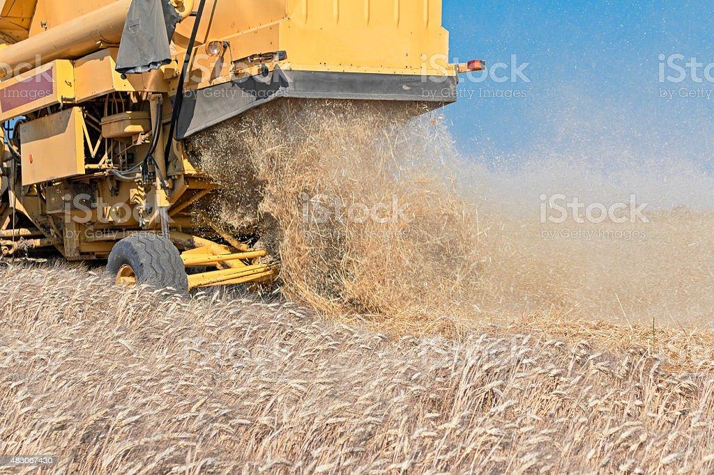 yellow combine harvester stock photo