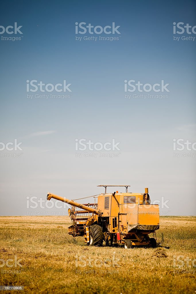 Yellow combine harvester working in a wheat field royalty-free stock photo