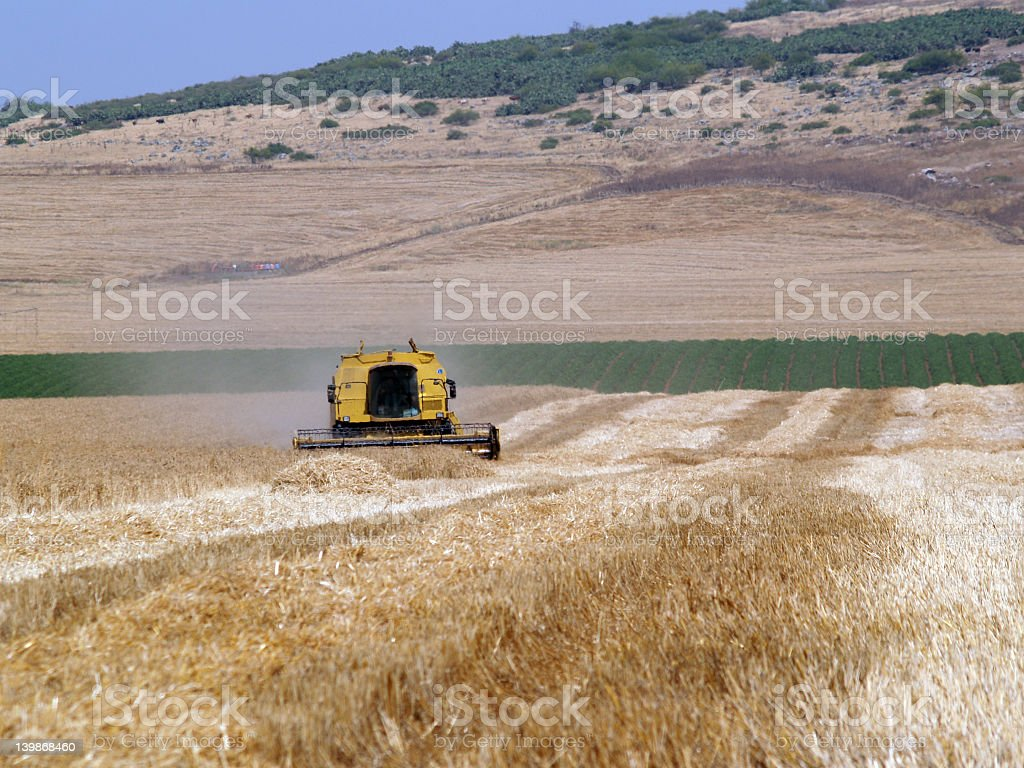 Yellow combine stock photo