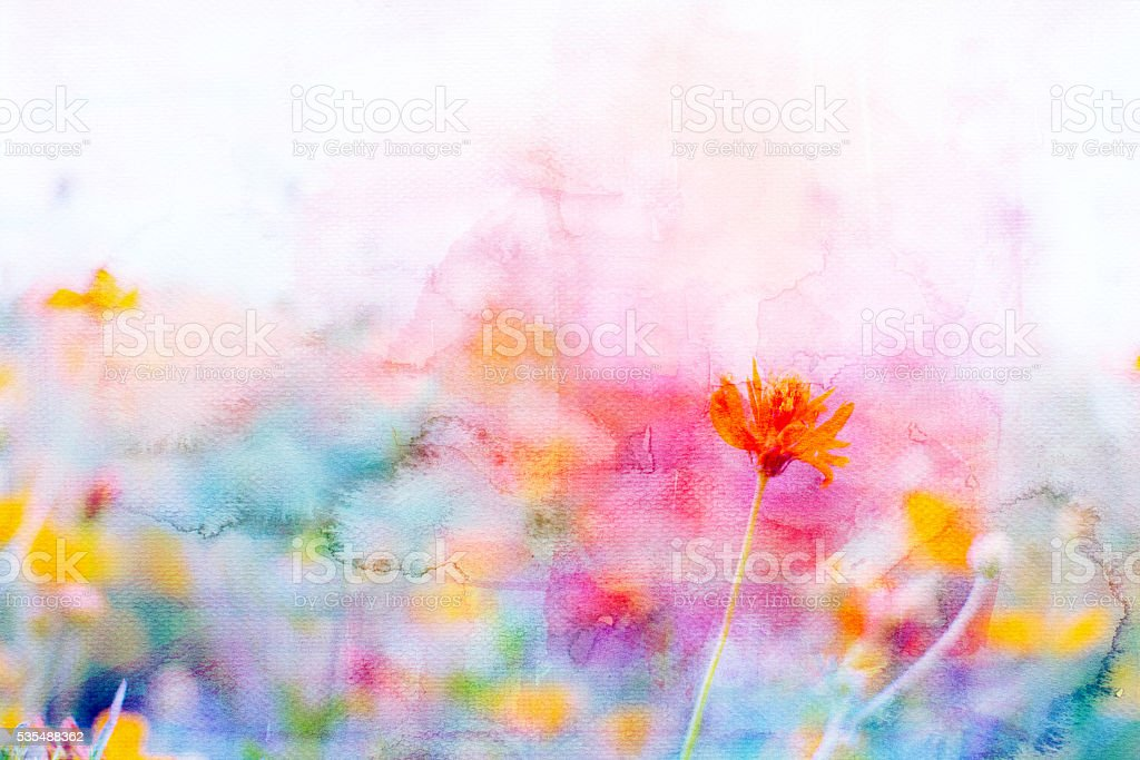Yellow cosmos flowers image mix with painted watercolor on paper stock photo