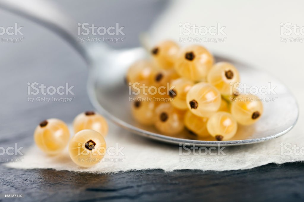 Yellow Currants. royalty-free stock photo