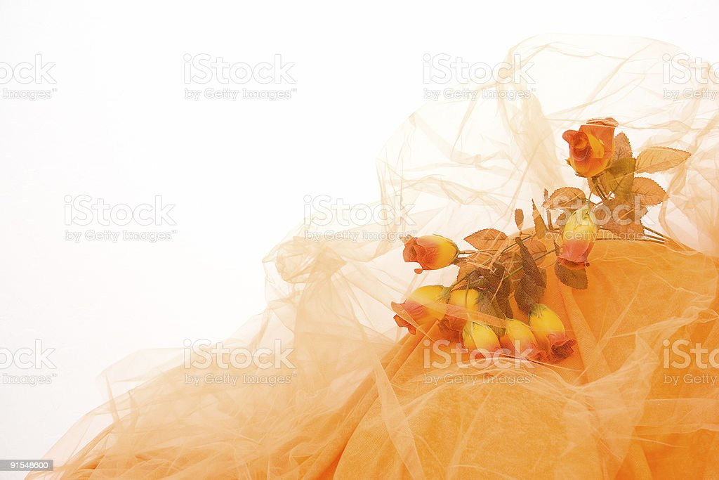 Yellow Dream royalty-free stock photo