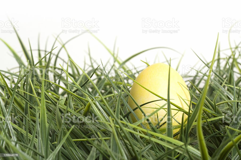 Yellow Easter Egg in Grass stock photo