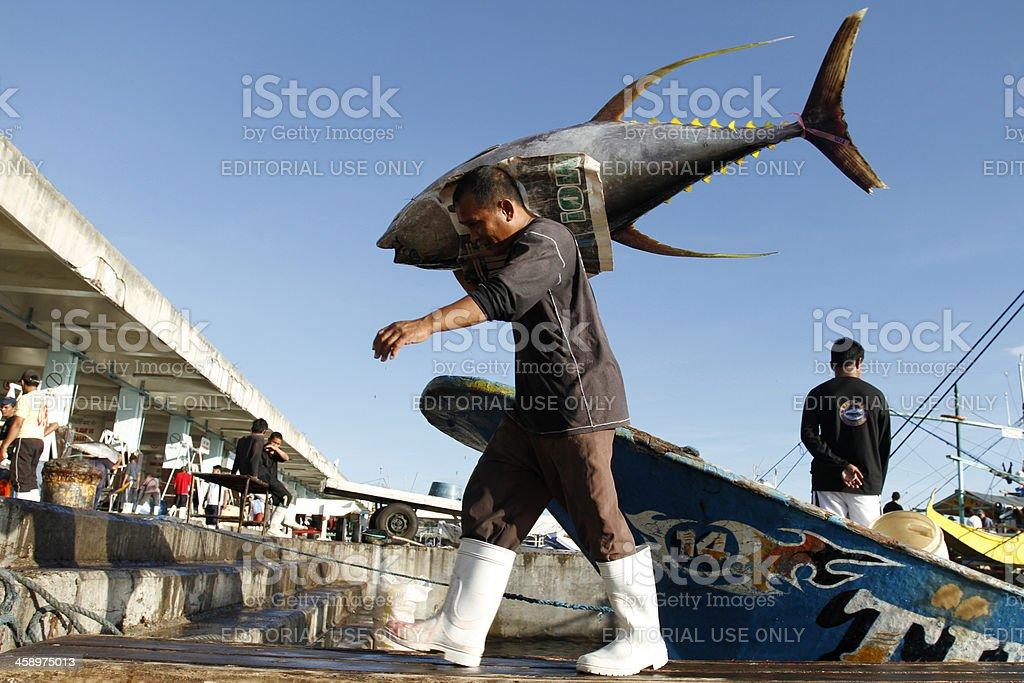 Yellow Fin Tuna royalty-free stock photo