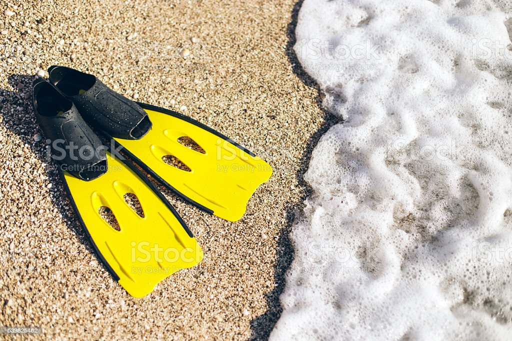 yellow flipers on a sand beach stock photo