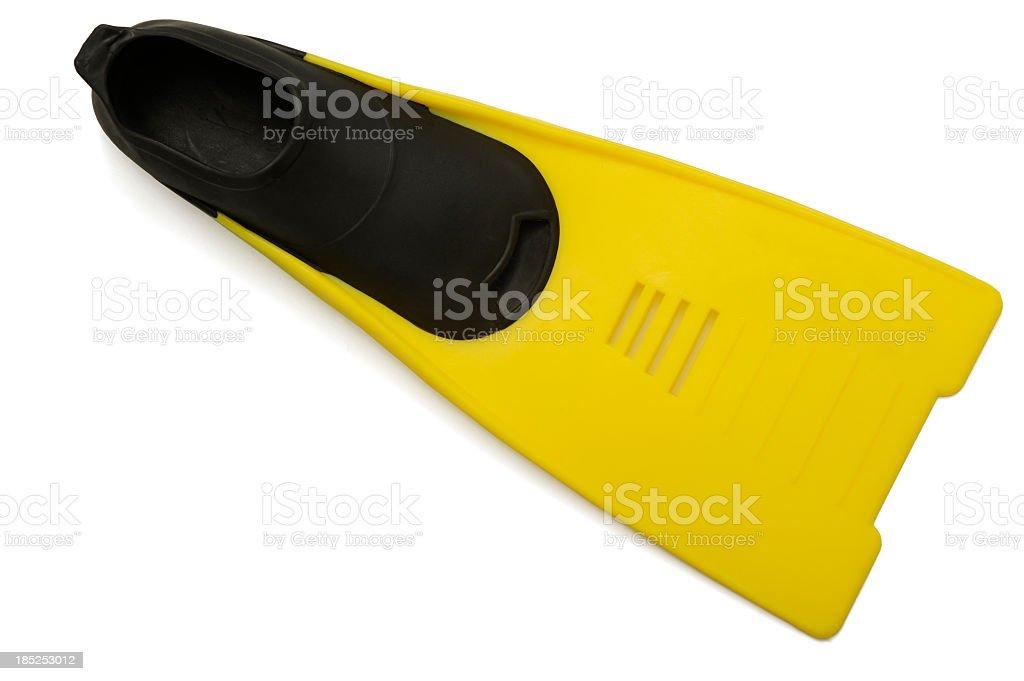 Yellow flipper stock photo
