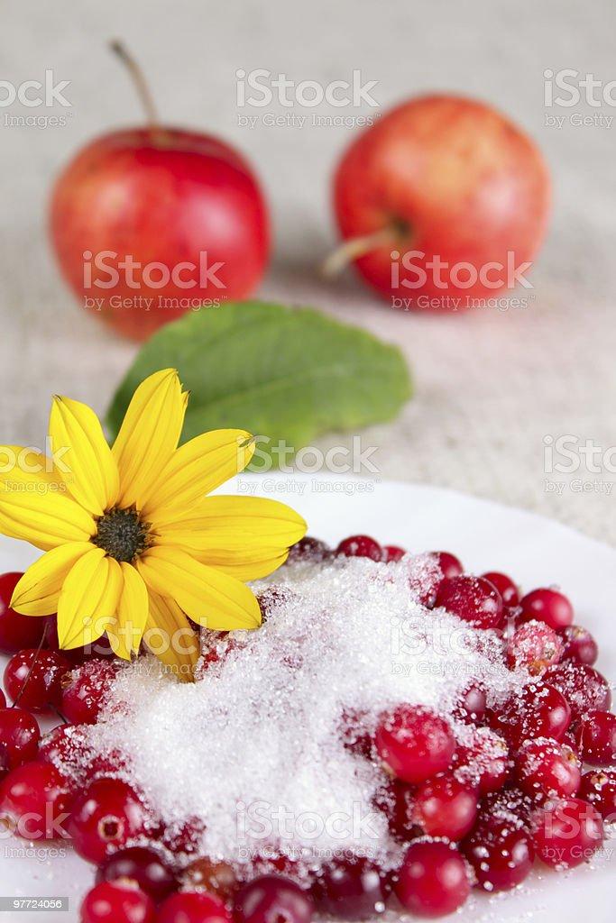 Żółty Kwiat i cowberry na jabłka zbiór zdjęć royalty-free