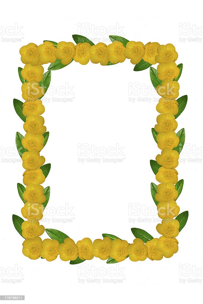 Yellow flowers and green leaves frame royalty-free stock photo