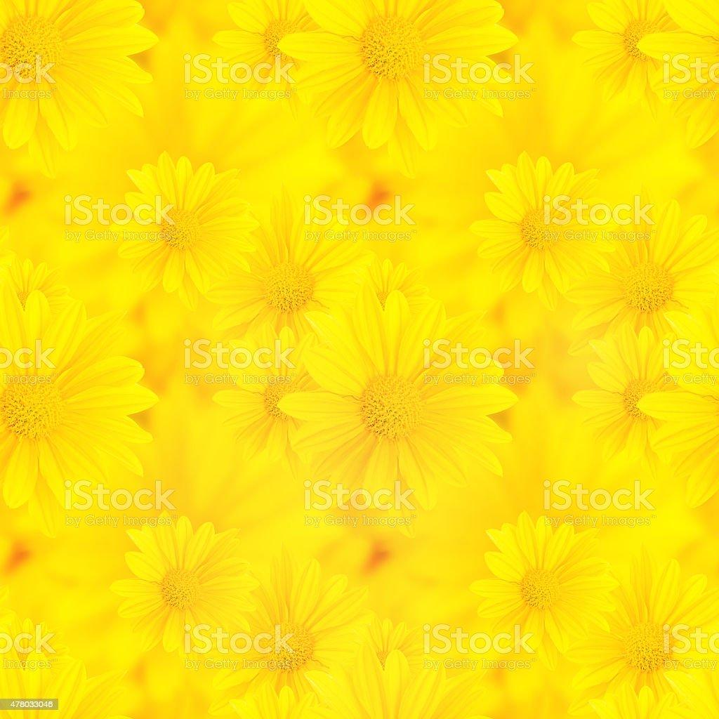 yellow flowers, seamless pattern stock photo
