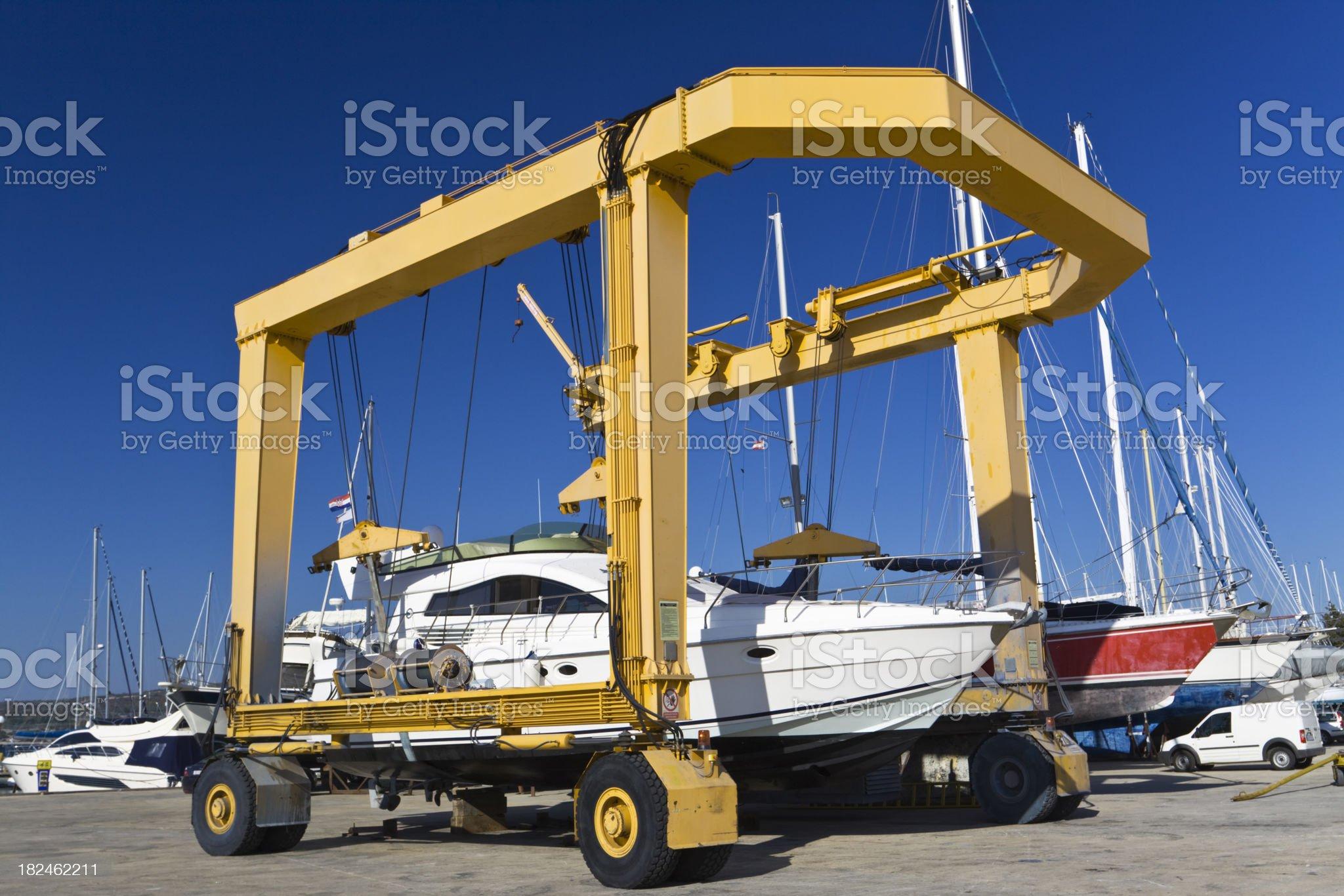 yellow giant royalty-free stock photo
