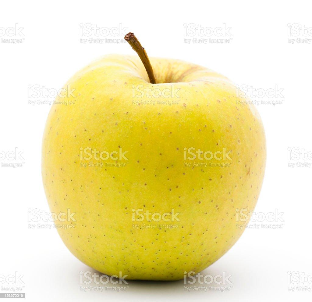 Yellow Golden apple stock photo