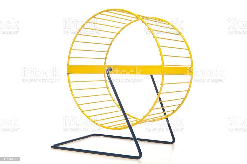 Yellow hamster wheel isolated on white. stock photo