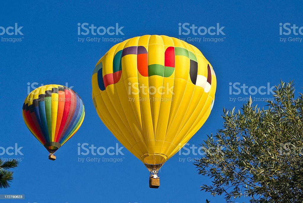 Yellow Hot Air Balloon over the Tree Tops royalty-free stock photo
