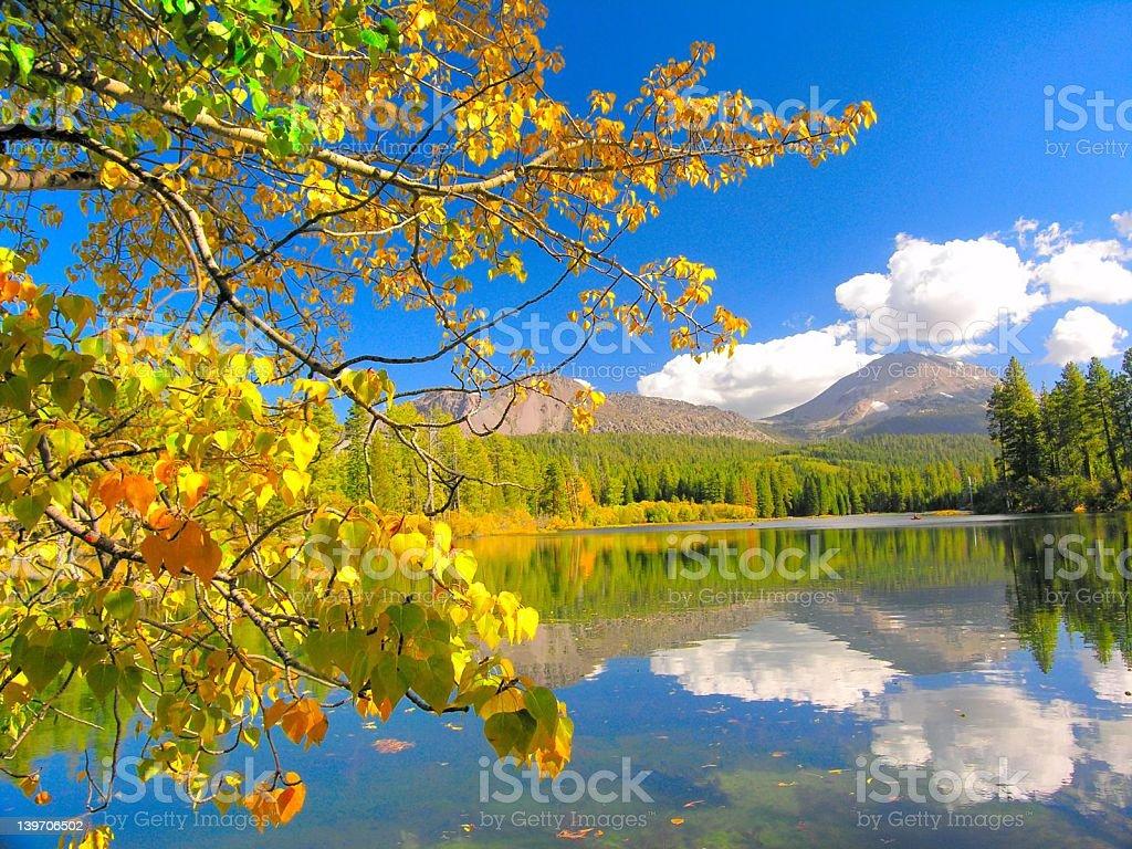 Yellow Leaves, Mazanita Lake, Lassen Peak, Lassen National Park stock photo