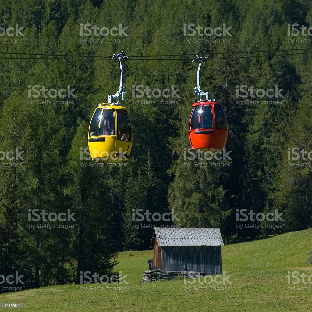 Yellow meets red, with a green backdrop royalty-free stock photo