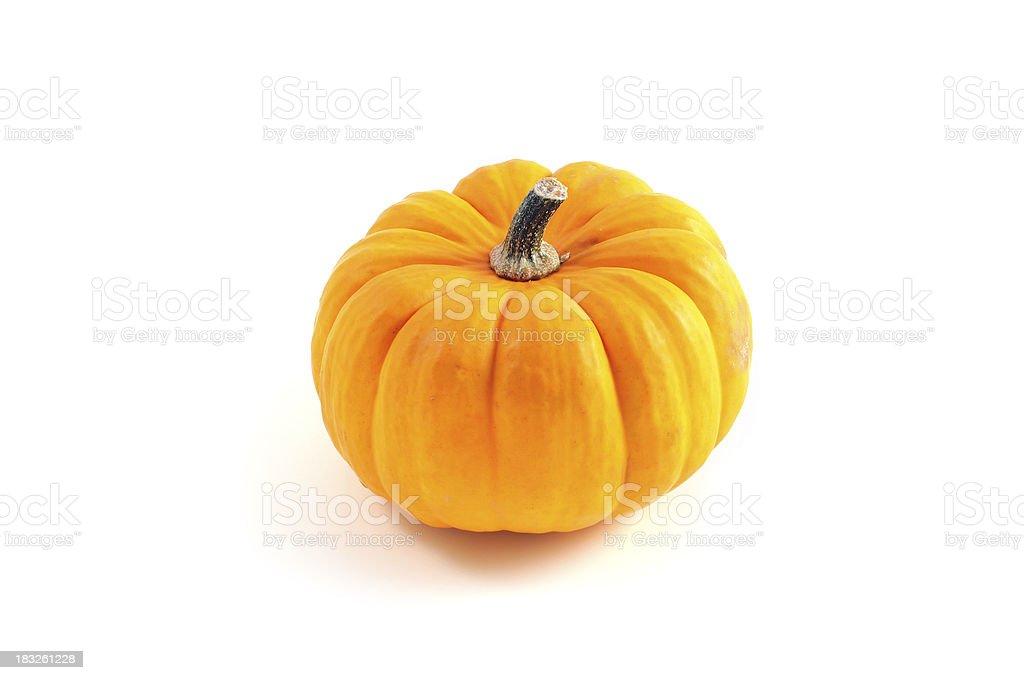 yellow orange gourd stock photo