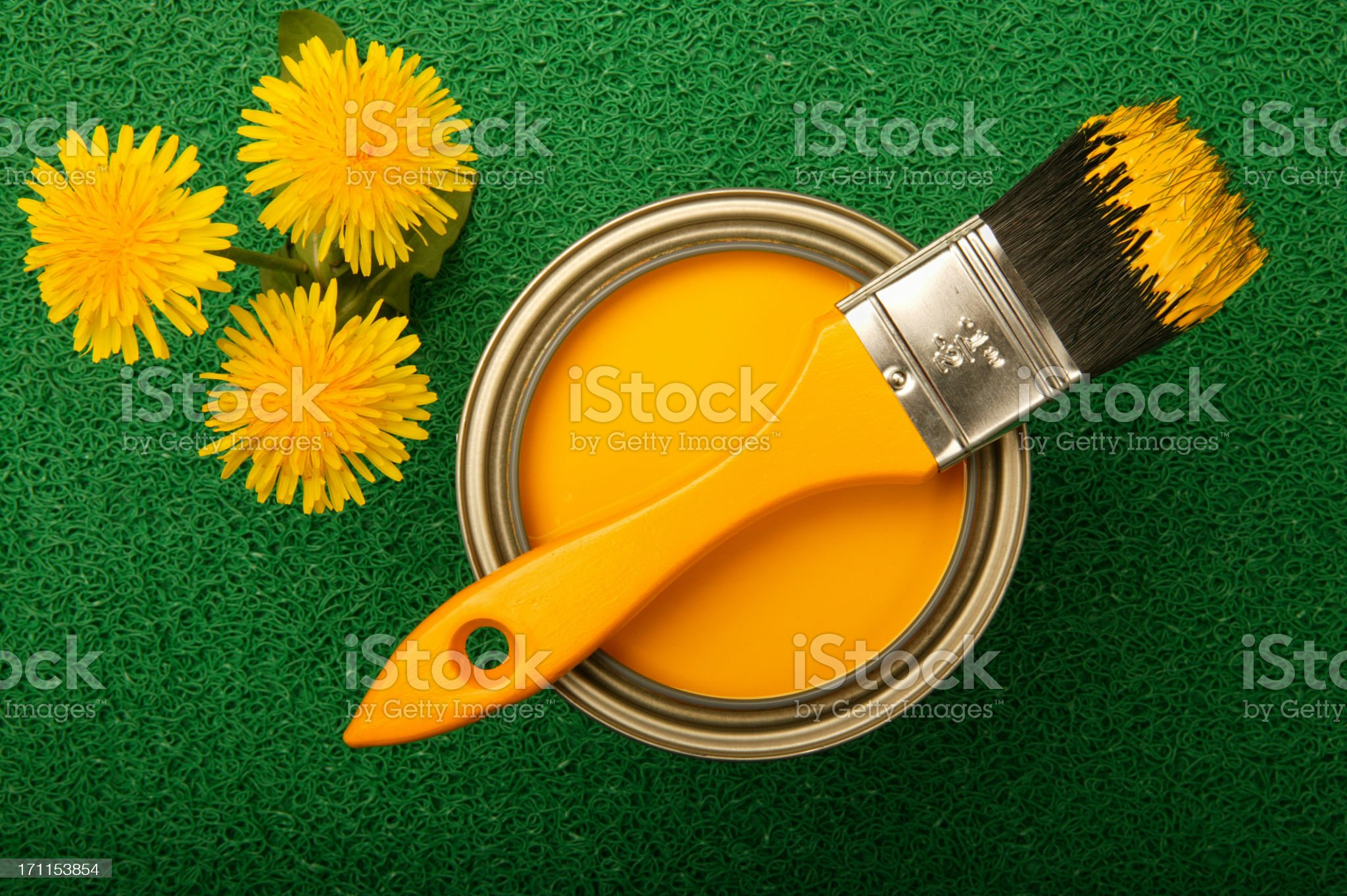 Yellow paint and dandelions on green turf royalty-free stock photo