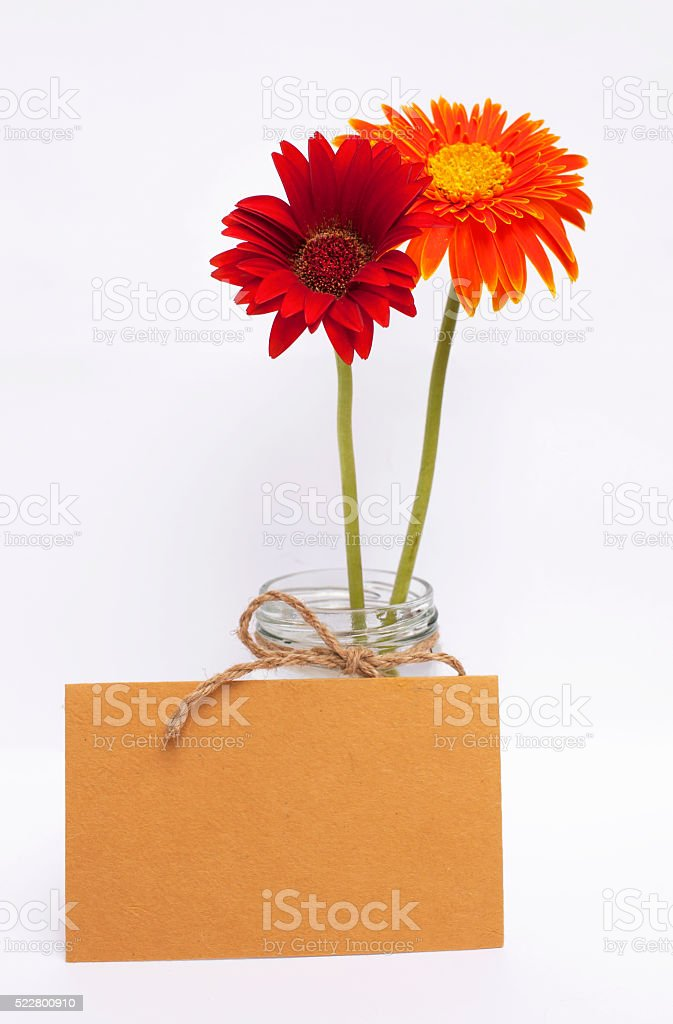 Yellow paper card with red and orange daisy flower stock photo