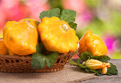 yellow pattypan squash with leaf in a wicker basket on