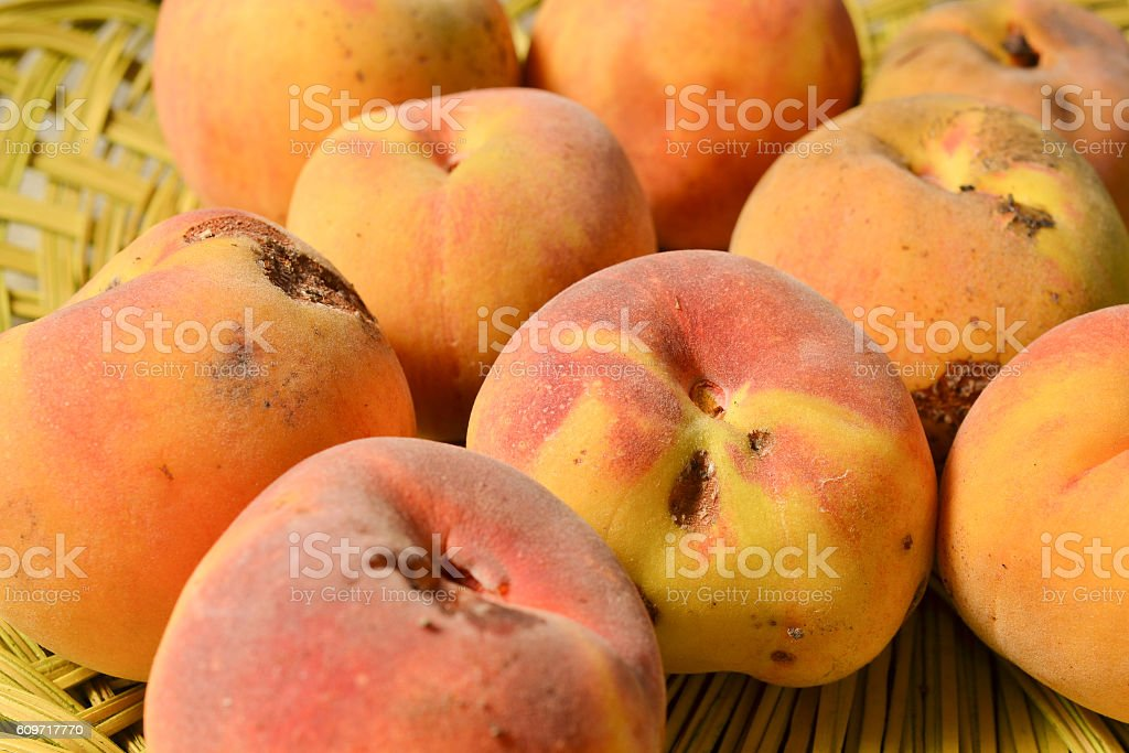 Yellow peach harvest stock photo