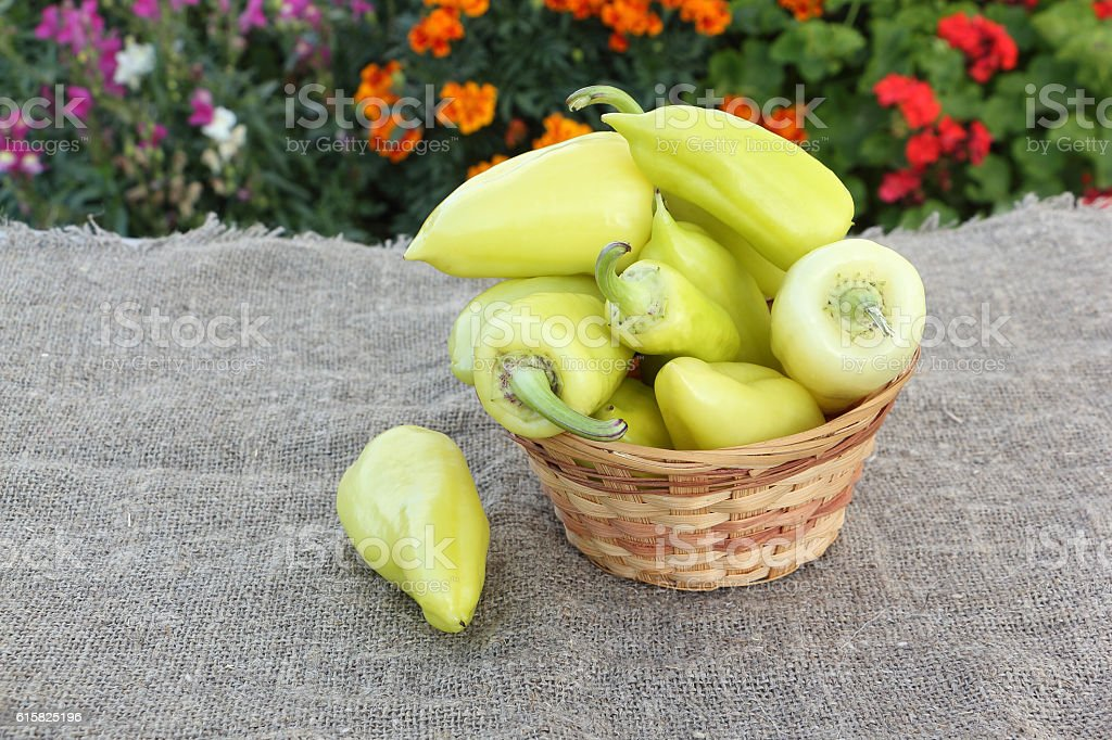 Yellow pepper in a  basket on a table outdoors stock photo