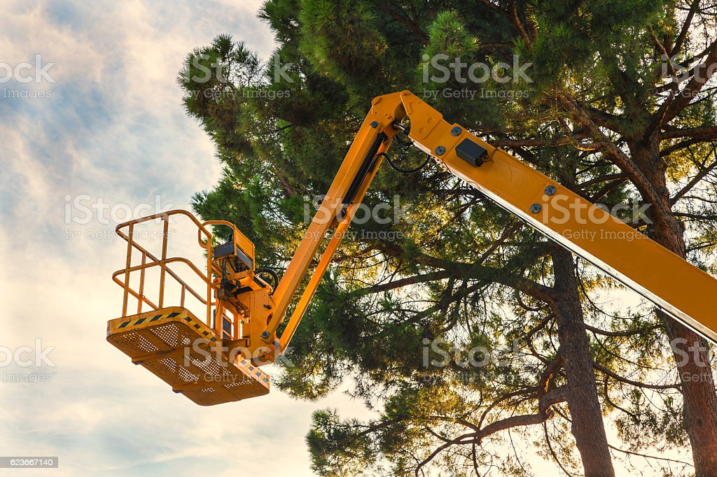 yellow platform lift in the forest stock photo