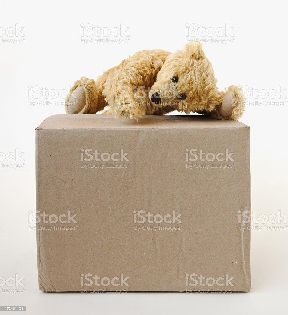 Yellow plush teddy bear climbing on a  cardboard box. stock photo