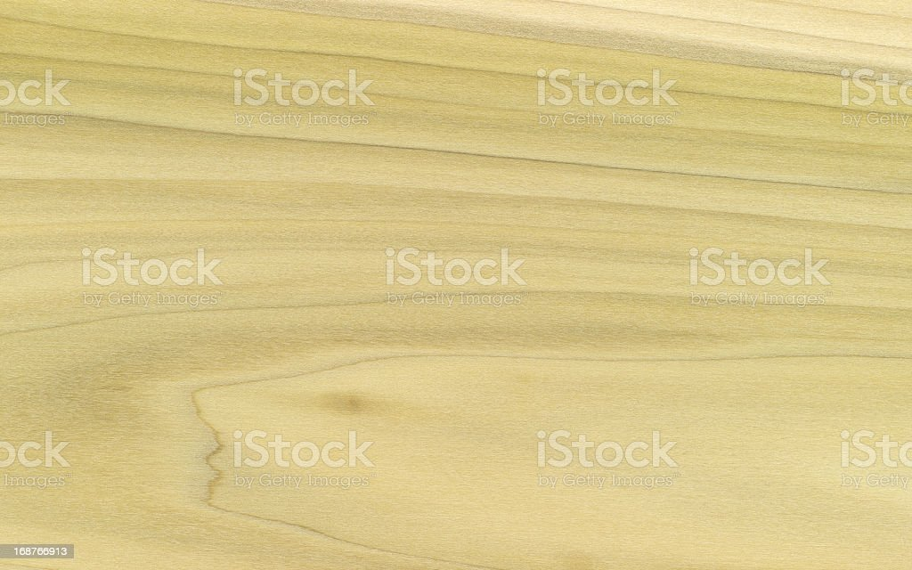 Yellow Poplar Wood Grain XXXL stock photo