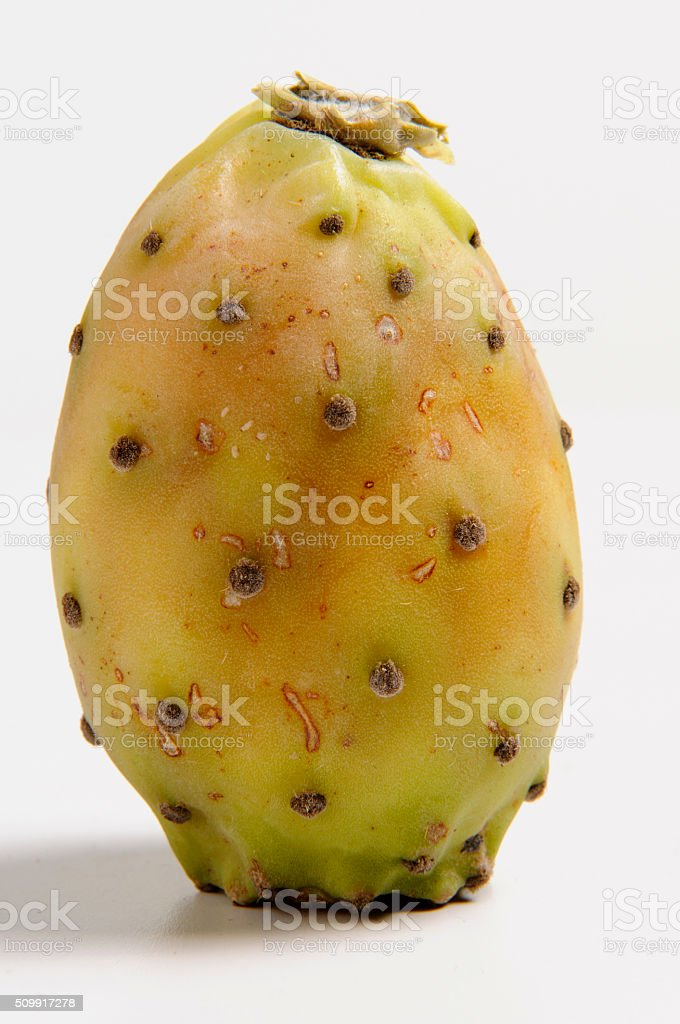 Yellow prickly pear stock photo