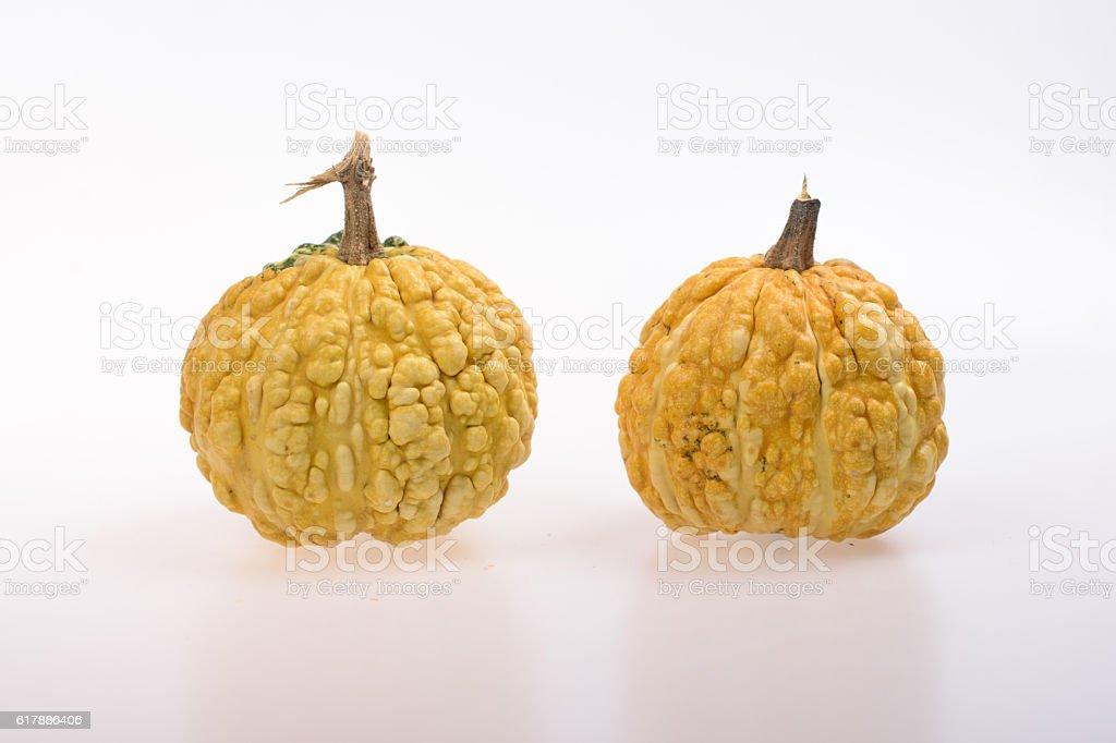 Yellow pumpkins stock photo