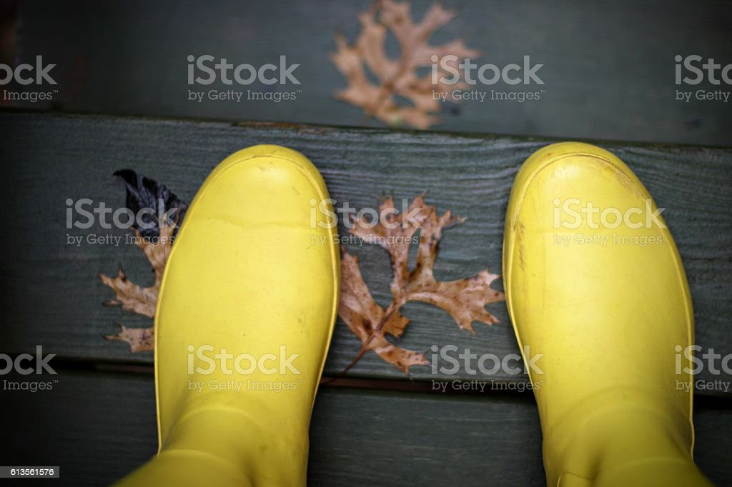 Yellow Rain Boots on a Rainy Fall Day stock photo