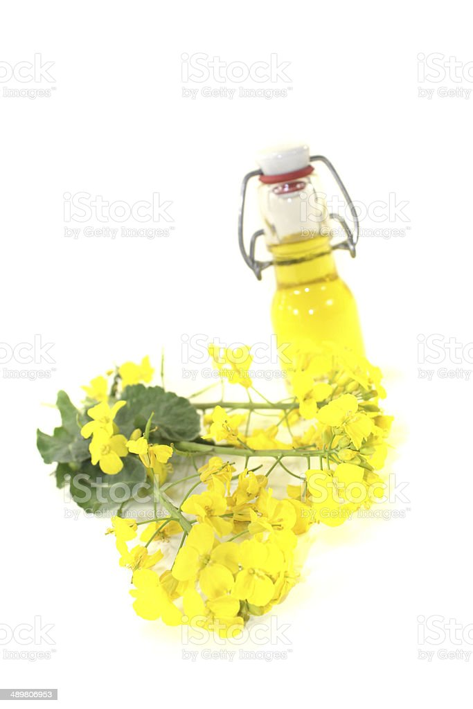 yellow Rapeseed oil royalty-free stock photo