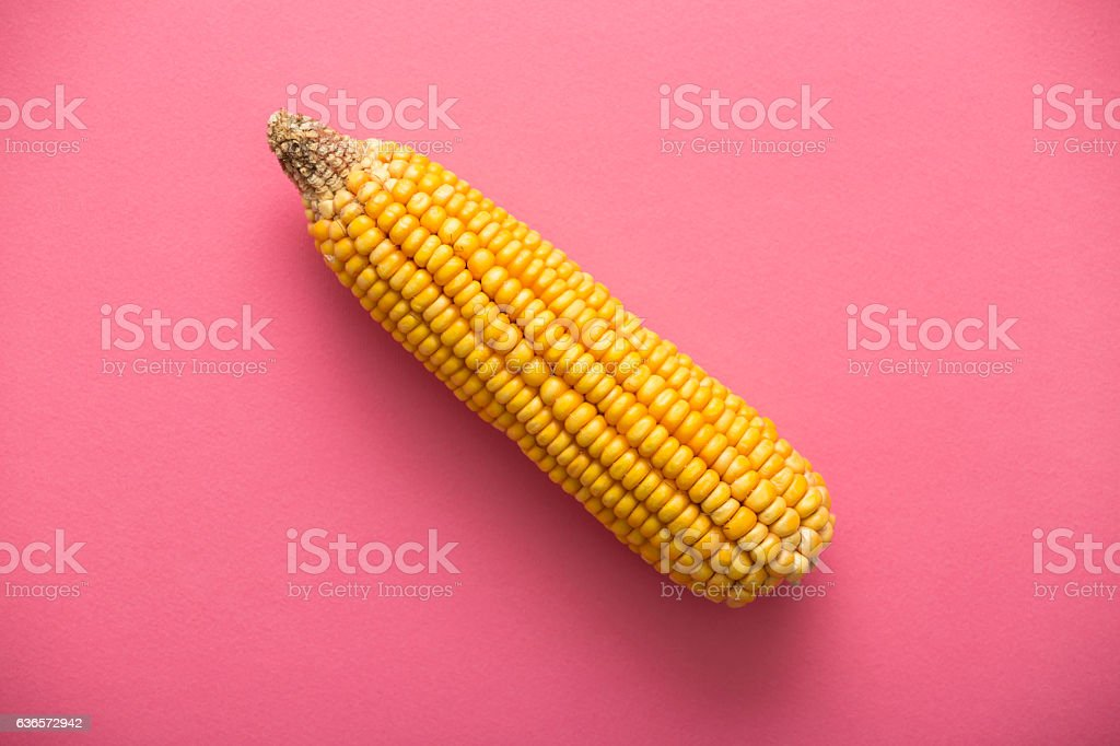 Yellow raw corn on rose quartz background. Directly above view. stock photo