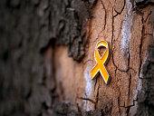 세월호 리본 Yellow Ribbon on tree 나무 가로수