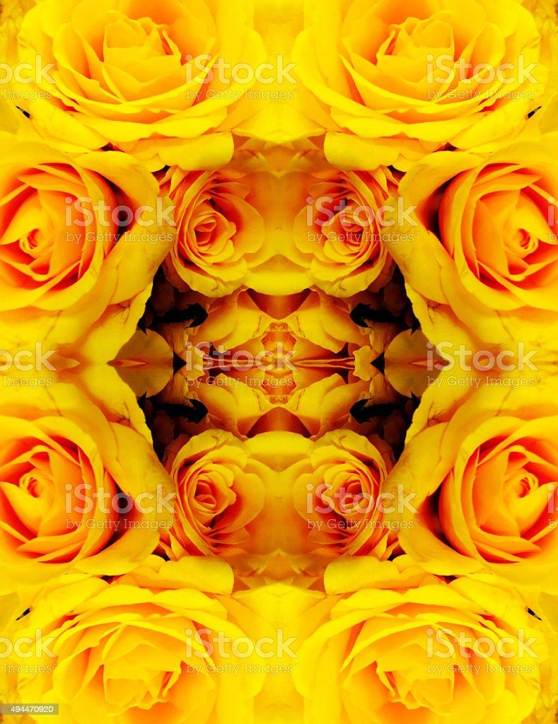 Yellow rose kaleidoscope background royalty-free stock photo