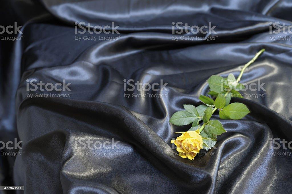 Yellow rose on black satin stock photo