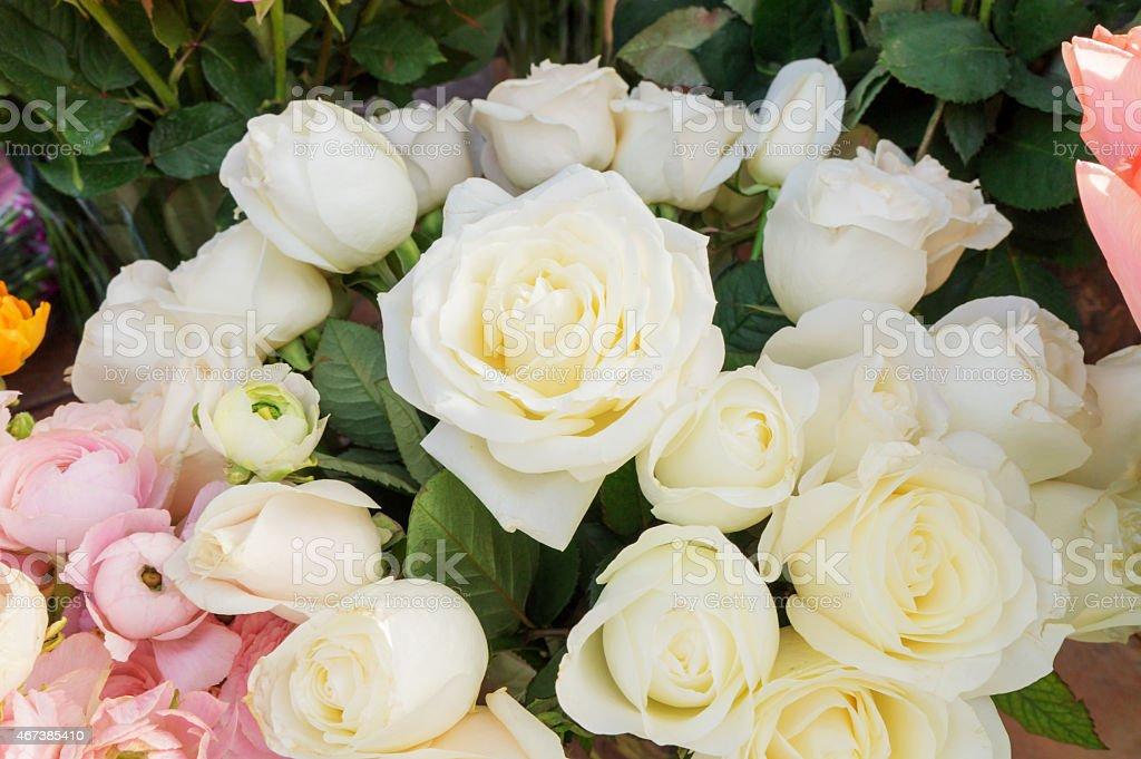노란색 로즈 royalty-free 스톡 사진