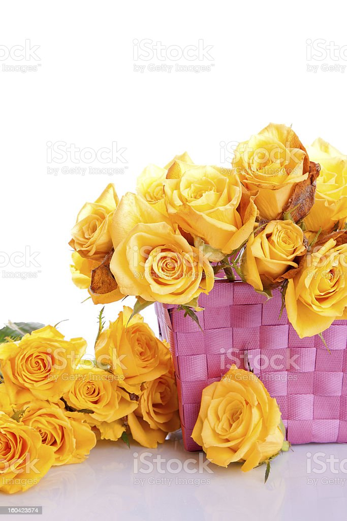 yellow roses in a gift basket royalty-free stock photo