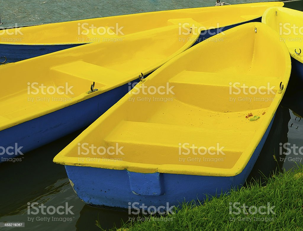 yellow row boats in a river royalty-free stock photo