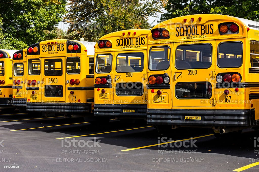 Yellow School Buses in a District Lot V stock photo