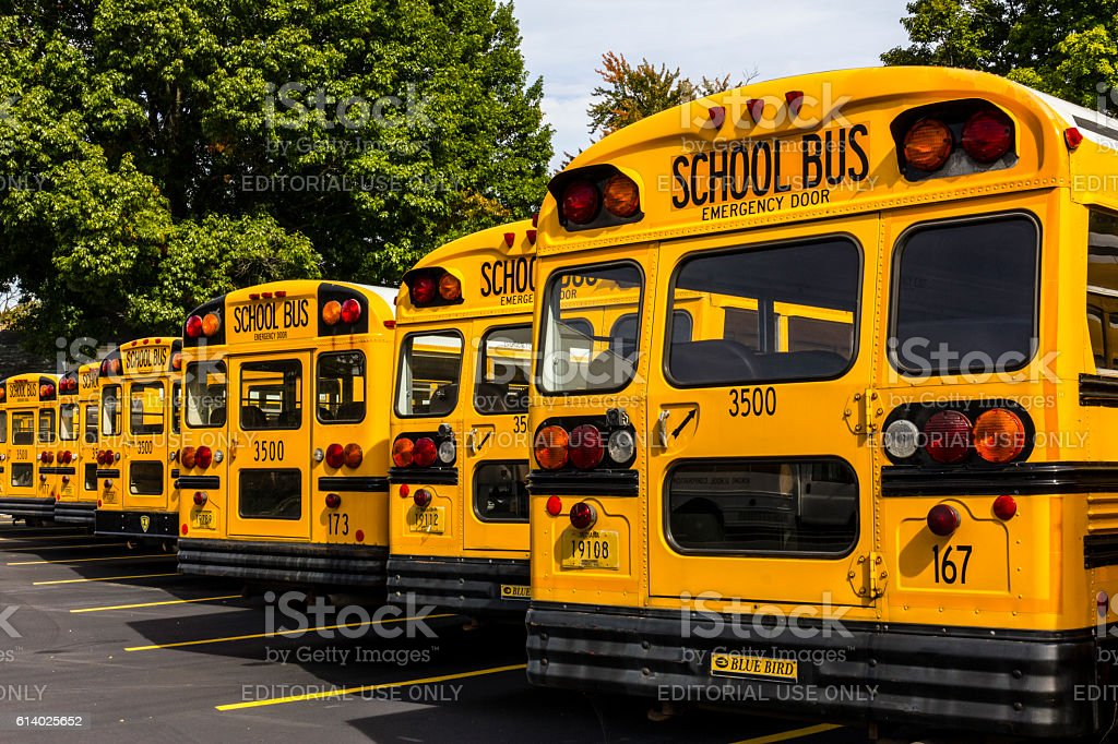 Yellow School Buses in a District Lot VI stock photo