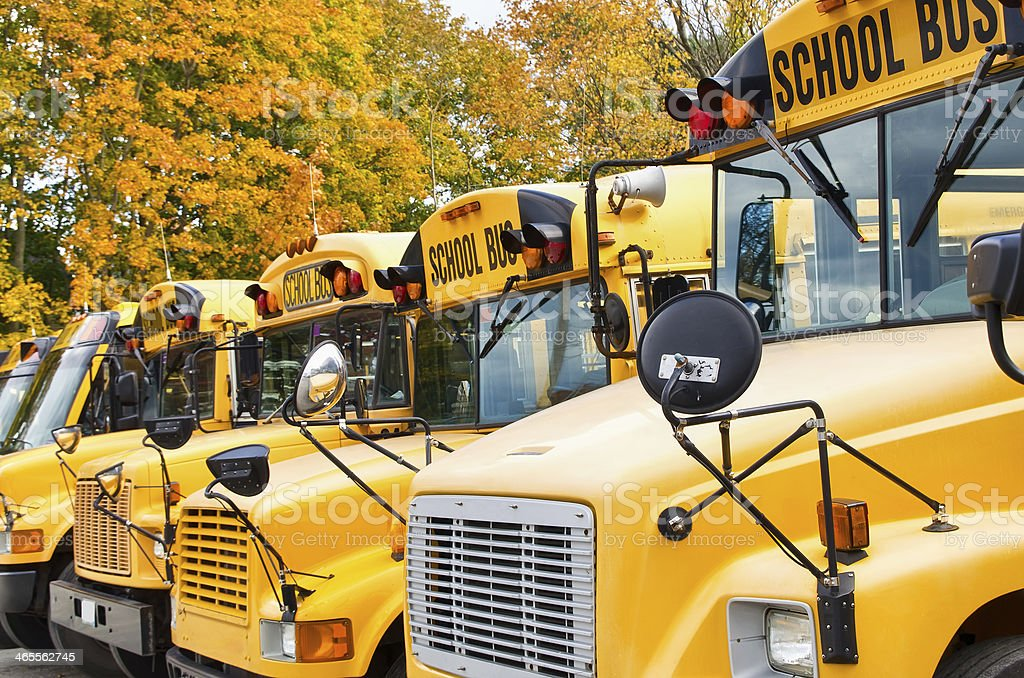 Yellow school buses stock photo