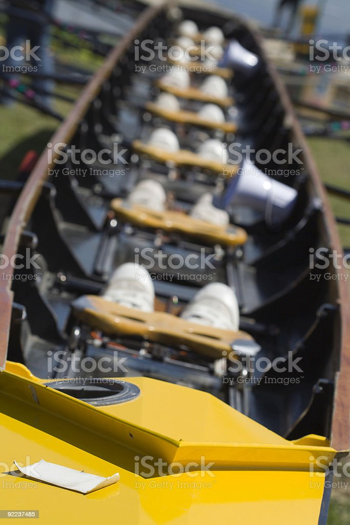 Yellow Scull royalty-free stock photo