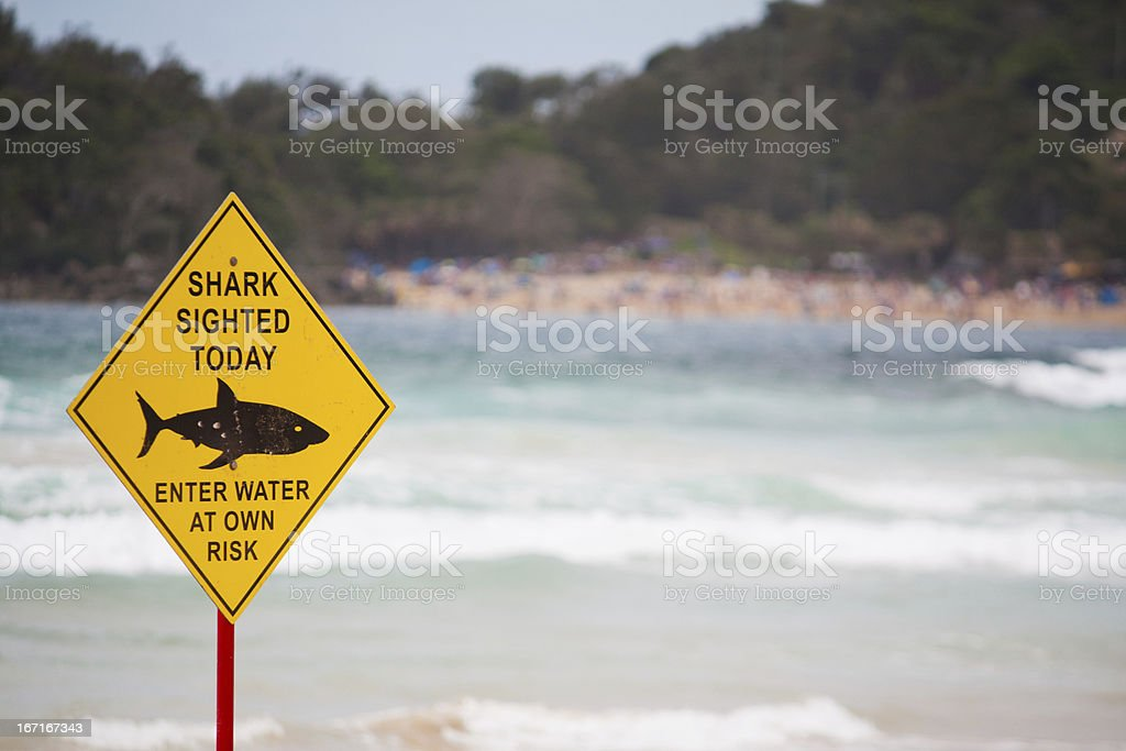 A yellow shark warning sign ahead of the waves at the beach stock photo