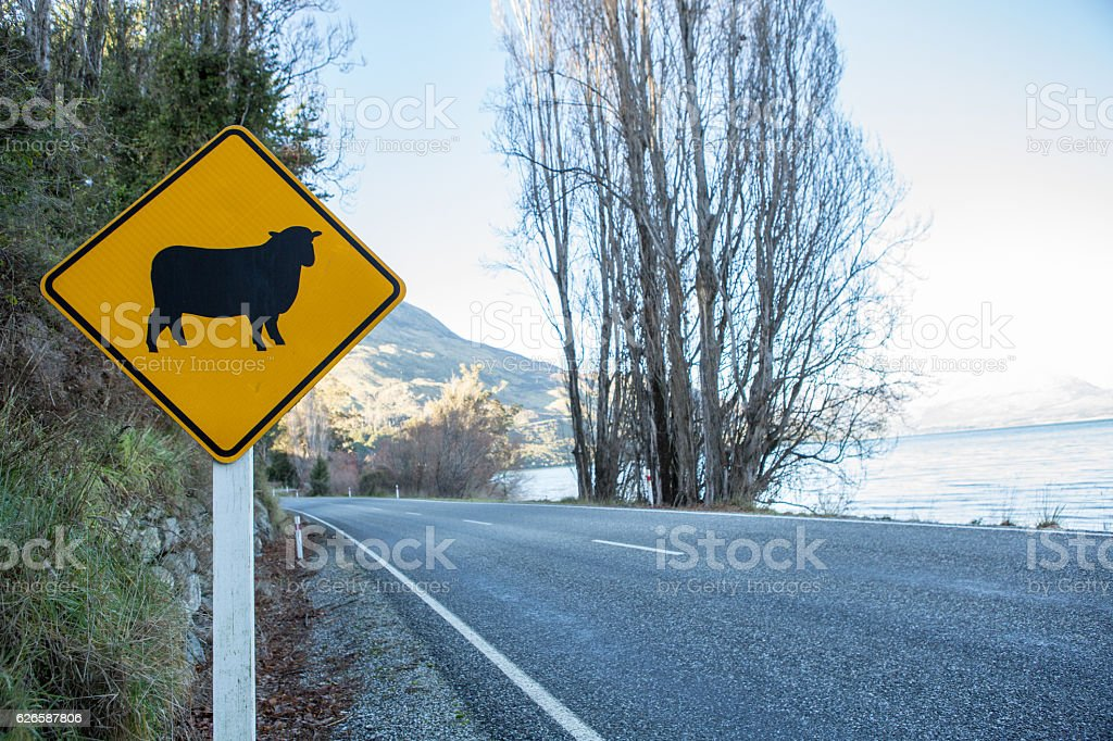 Yellow sheep crossing sign on road, New Zealand stock photo