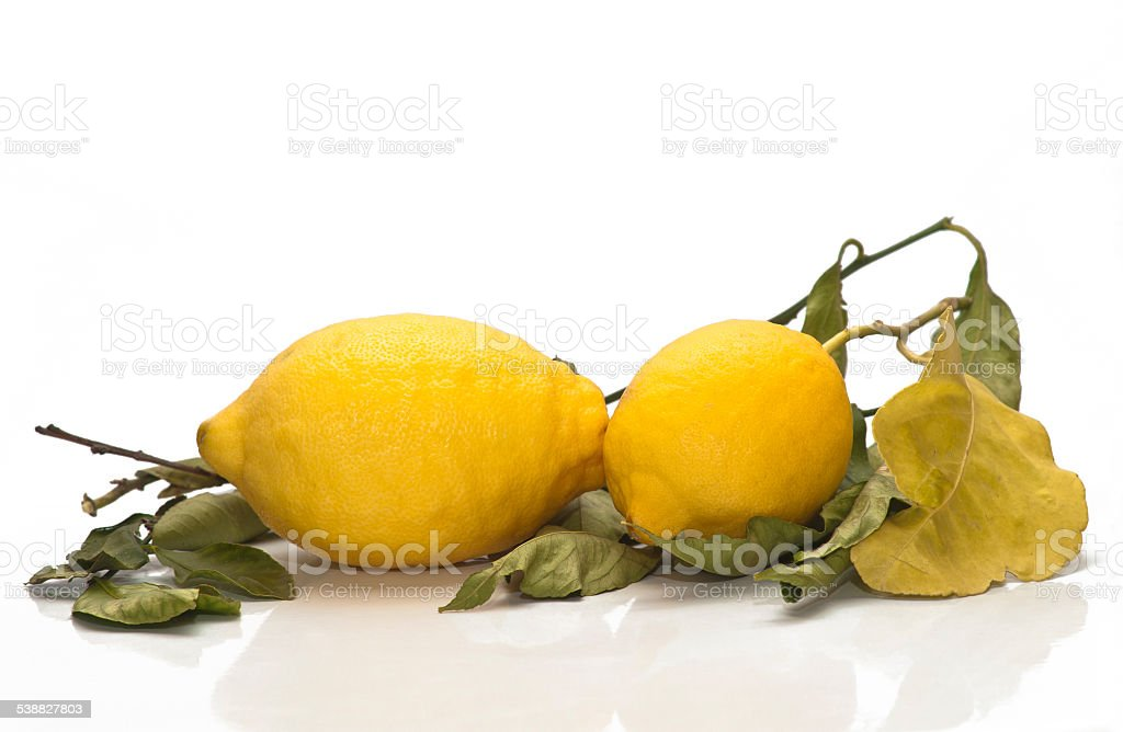 yellow sicilian fresh lemons stock photo