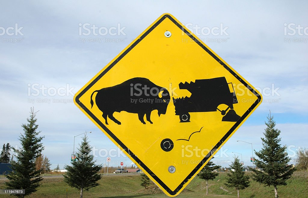 Yellow signpost warning for buffalo collision,Alaska royalty-free stock photo