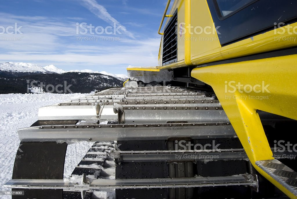 Yellow snow cat royalty-free stock photo
