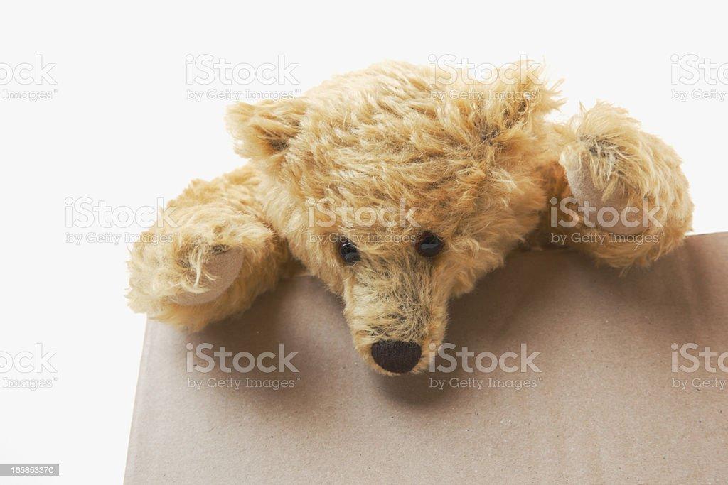 Yellow teddy bear on top of cardboard box looking down. stock photo