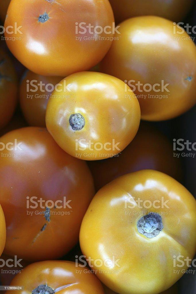yellow tomatoes royalty-free stock photo